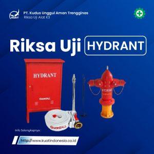 riksa-uji-hydrant