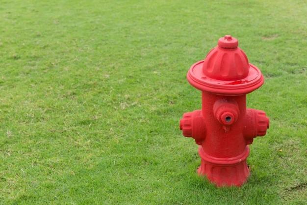 Hydrant Halaman